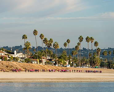 People walking along waterfront with palm trees in the background