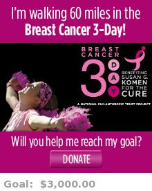 I'm walking 60 miles in the Washington, DC Breast Cancer 3-Day! Will you help me reach my goal?