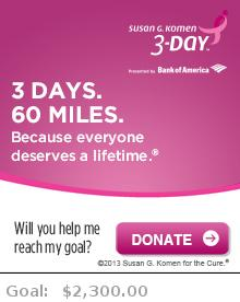 Help me reach my goal for the Susan G. Komen Philadelphia 3-Day