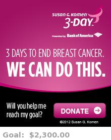 Help me reach my goal for the Susan G. Komen Tampa Bay 3-Day